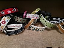 custom made dog collars in Kingwood, Texas