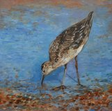A Bird on the Beach (South Downs) by Edita Tamulyte 2012 in Cambridge, UK