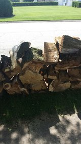 free wood in Plainfield, Illinois