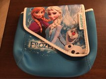 'Frozen' Bike Bag in Chicago, Illinois