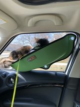 Small Dog or Cat window seat in Naperville, Illinois