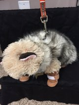 Xs dog fur jacket and booties in Fort Campbell, Kentucky