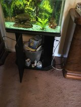 40 gallon fish tank with stand and accessories in Perry, Georgia