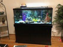 Fish Tank 70 Gallons in Schaumburg, Illinois