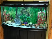 70 Gallon Fish Tank in Schaumburg, Illinois