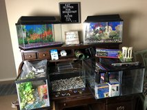 Fish Tanks, Reptile Tanks & Accessories in Kingwood, Texas