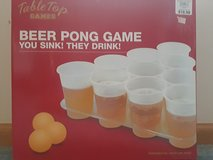 Beer Pong Game in Chicago, Illinois