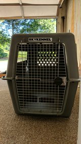 Petmate Sky Kennel in Greenville, North Carolina