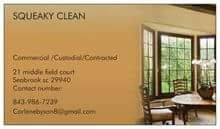 Squeaky clean professional services in Beaufort, South Carolina