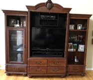 Entertainment Center in Batavia, Illinois