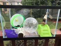 Two story small animal habitat and accessories in Lockport, Illinois