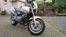 Honda Hornet 600 in great condition in Spangdahlem, Germany