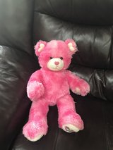 Pink Bear from Build a Bear in Batavia, Illinois