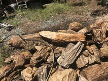 lots of Petrefied wood for sale in DeRidder, Louisiana