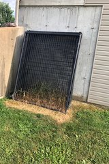 Large outdoor dog kennels in Rolla, Missouri