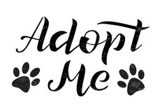 Pet Adoption Event Co-op Dover July 28, 2018 8am-12pm in Fort Campbell, Kentucky