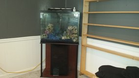65 gal. Aquarium in Orland Park, Illinois
