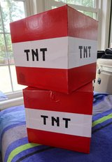 Minecraft TNT Boxes For Birthday Party Etc. in Camp Lejeune, North Carolina