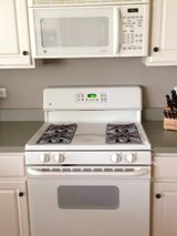 Gas Stove and Microwave in Naperville, Illinois