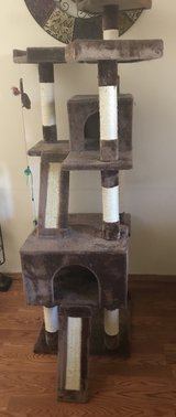 cat tree house in Camp Pendleton, California