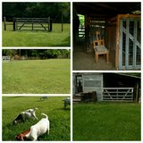 Remodeling sm farmhouse & 1/2 acre  pasture 4 rent soon in Livingston, Texas