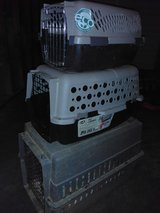 Pet Carriers in Fort Campbell, Kentucky