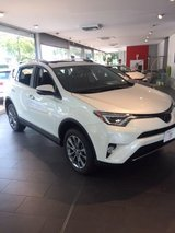 Toyota Rav 4 Limited 2018 AWD in Ramstein, Germany