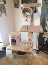 Cat Scratch tower in Kingwood, Texas
