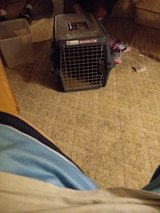 small dog carrier in Lawton, Oklahoma