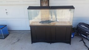 55g aquarium/w or w/o fish in Rolla, Missouri