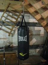 Punching Bag in Joliet, Illinois