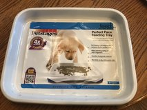 New Petstages Perfect Pace Feeding Tray in Naperville, Illinois