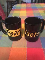 Fear factor mugs in New Lenox, Illinois