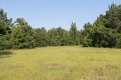 20 Acres in Fort Polk, Louisiana