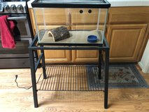 Reptile Setup w/Stand and Heat Pad in Fairfield, California