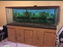 150 g aquarium tank and stand only in Buckley AFB, Colorado