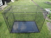 Large metal pet cage in Lakenheath, UK