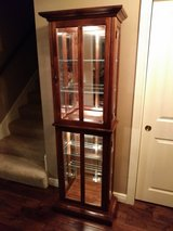 Nice Lighted Glass Display Cabinet in Naperville, Illinois