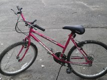 Pink Girl's Bicycle in Yorkville, Illinois