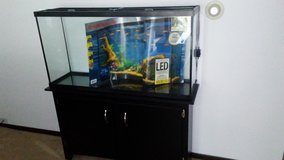 Fish tank and stand in Orland Park, Illinois
