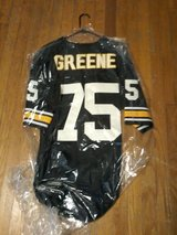 Joe Greene steelers jersey in Byron, Georgia