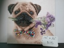 Bead graphics. cats & Dogs & Birds in Baytown, Texas