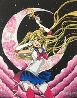 Pink Sailor Moon Painting in Vista, California