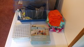 Guinea Pig Supplies & C&C cage in Conroe, Texas