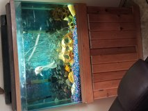 45 gallon high fish tank in Cherry Point, North Carolina