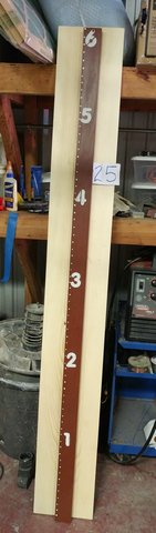 Wooden Growth chart in Kingwood, Texas