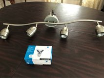 ceiling light fixture with box of halogen bulbs in Glendale Heights, Illinois