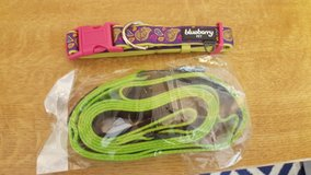 Brand new blueberry dog leash and collar in Stuttgart, GE