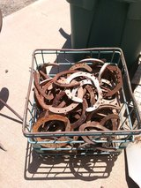Horse shoes in Alamogordo, New Mexico