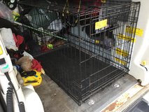 "36"" LifeStages A.C.E. Dog Crate Model: 436 Size: 23 W x 25 H x 36 L 36"" LifeStages A.C.E. Dog Crate in Okinawa, Japan"
